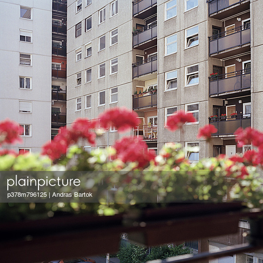 Apartment block and flowers - p378m796125 by Andras Bartok