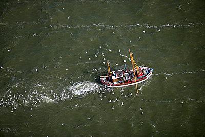 Krabbenfischer - p1016m741975 von Jochen Knobloch