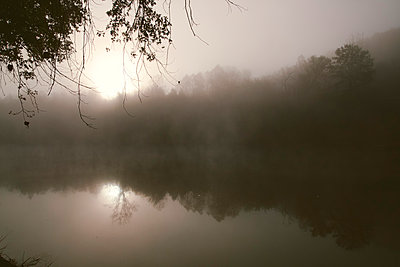 Fog and Tree Reflection - p1262m1087735 by Maryanne Gobble