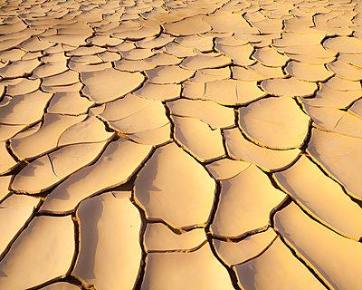 Cracks in the sand, Saudi-Arabia  - p1542m2204102 by Roger Grasas
