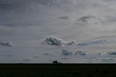 Silhouette eines Traktors und Wolkengebilde in der Abenddämmerung - p552m1498337 von Leander Hopf