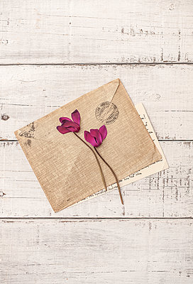 Flowers and letter - p971m2026260 by Reilika Landen
