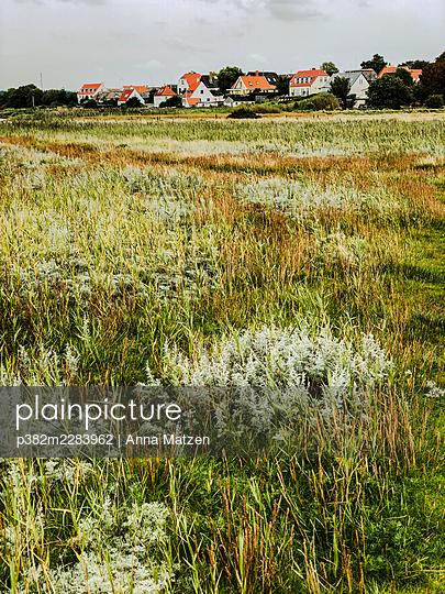 Small village by the sea - p382m2283962 by Anna Matzen