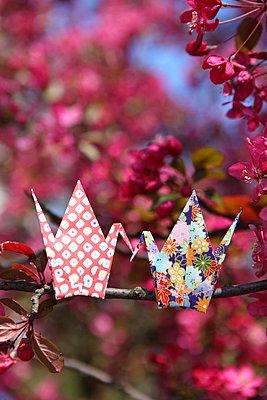 Origami Vogel auf Zweig - p045m901653 von Jasmin Sander