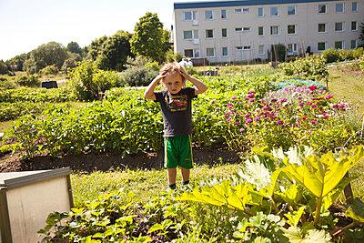 Little boy in the garden - p1027m2288093 by Carola Björk