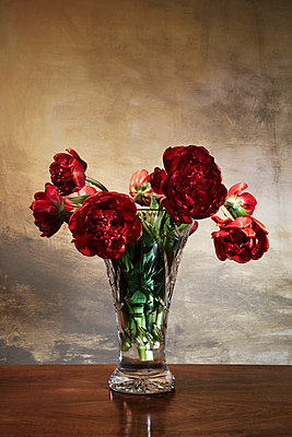 Withered tulips in crystal vase on a table - p1312m2272145 by Axel Killian