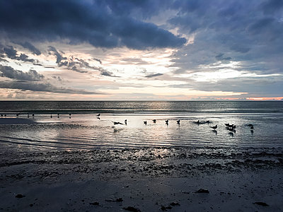 Scenic view of sea against cloudy sky during sunset - p1166m1186587 by Cavan Images