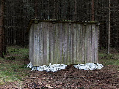 Holzschuppen am Waldrand - p240m1468121 von Valerie Wagner
