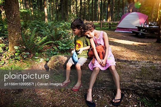 p1166m1099587f von Cavan Images