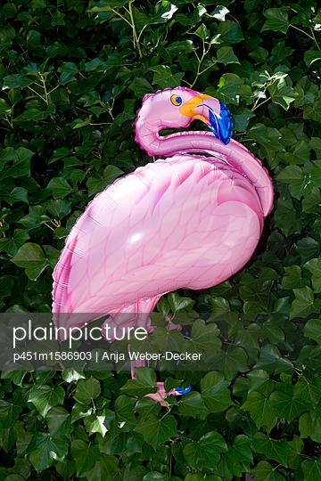 Flamingo Folienballon - p451m1586903 von Anja Weber-Decker