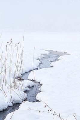 Winterlandschaft mit Bach - p1396m1463041 von Hartmann + Beese