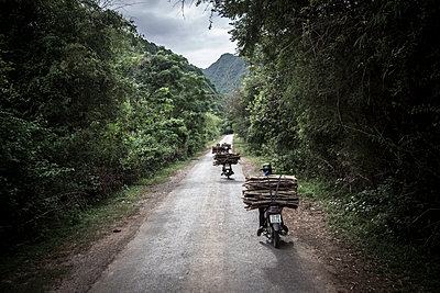 A group of people carry lumber on their motorbike, Phong Nha-Ke Bang National Park, Quang Binh Province, Vietnam, Southeast Asia - p934m1177183 by Francis Roux photography