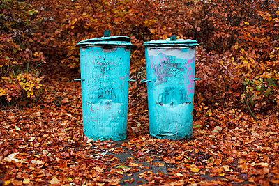 Herbstverfärbung - p2370468 von Thordis Rüggeberg