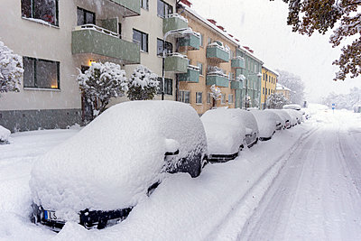 Snow on parked cars - p312m1228923 by Peter Lyden