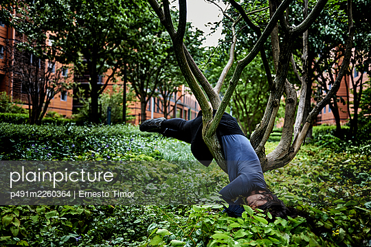 Woman hanging in a tree - p491m2260364 by Ernesto Timor