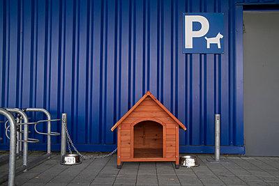 Hundeparkplatz - p417m716164 von Pat Meise