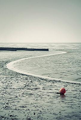 Low tide - p992m954682 by Carmen Spitznagel