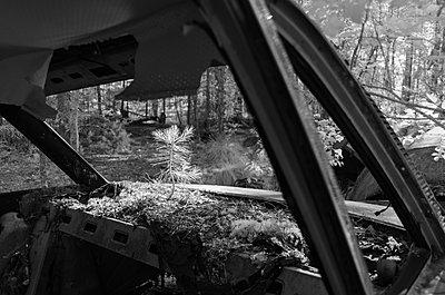 Autofriedhof - p1463m2192658 von Wolfgang Simlinger
