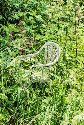 Plastikstuhl im Grünen - p1082m1586467 von Daniel Allan