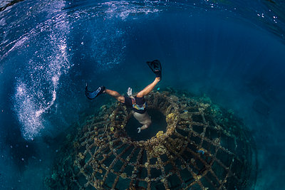 Man diving underwater, Perebutan, Bali, Indonesia - p1166m2202322 by Konstantin Trubavin
