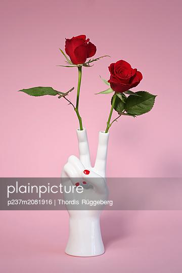 Porzellan-Hand mit zwei roten Rosen - p237m2081916 von Thordis Rüggeberg