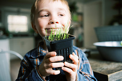 Little boy growing little leeks for the season. - p1166m2174297 by Cavan Images
