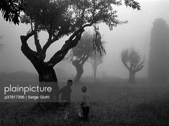 p37817396 von Serge Giotti