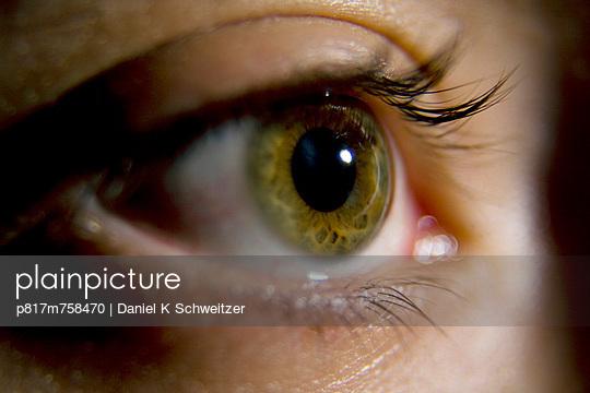 Beobachten - p817m758470 von Daniel K Schweitzer