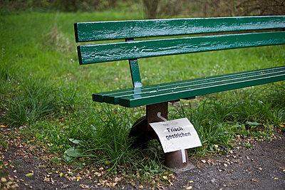 Coloured bench - p1980299 by David Breun