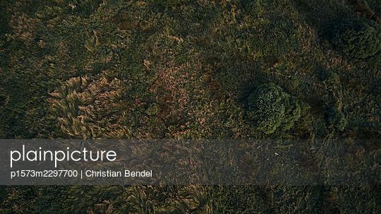 Aerial view, High moor - p1573m2297700 by Christian Bendel
