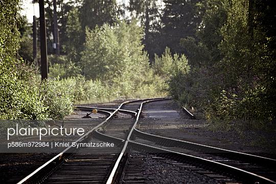 Alte Gleise und eine Weiche zwischen Bäumen - p586m972984 von Kniel Synnatzschke