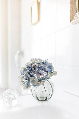 Vase mit Hortensie  - p1510m2028519 von Ingrid Amenda