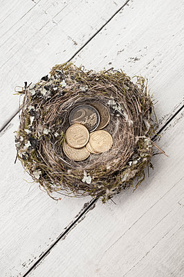 Coins in nest - p971m1190743 by Reilika Landen