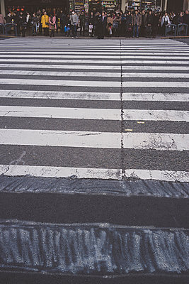 Pedestrian Crossing in Kyoto, Japan - p798m1007813 by Florian Löbermann