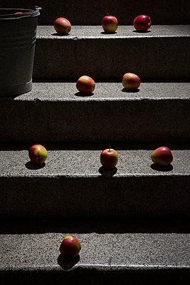Äpfel auf der Kellertreppe - p1149m1133287 von Yvonne Röder