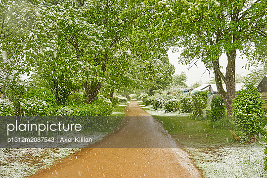 p1312m2087543 by Axel Killian