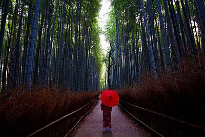 Arashiyama Bamboo Forest - p1399m2149698 by Daniel Hischer