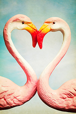 Fake flamingos forming heart - p1248m1439857 by miguel sobreira