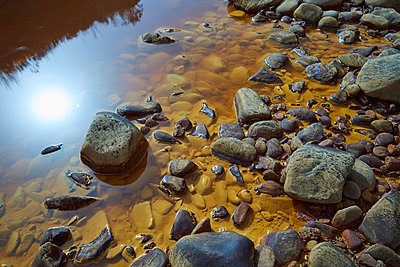 Rocky banks of Rio Tinto - p719m1222349 by Rudi Sebastian