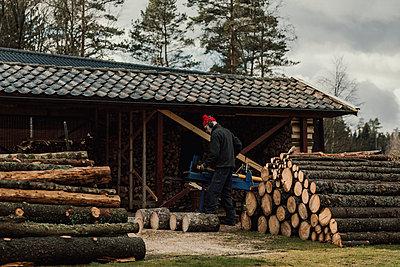 Couple sawing wood - p312m2190962 by Jennifer Nilsson