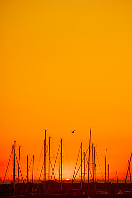 Orange sunset over Melbourne harbour - p1487m2150534 by Ludovic Mornand