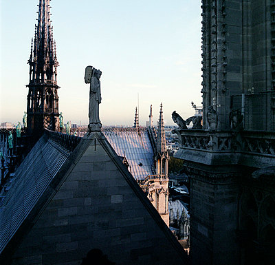 Notre Dame cathedral - p9100325 by Philippe Lesprit