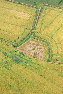 Yellow fields aerial view - p1048m1069274 by Mark Wagner