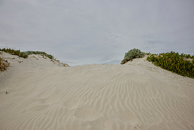 South Africa, Dunes - p1640m2245946 by Holly & John