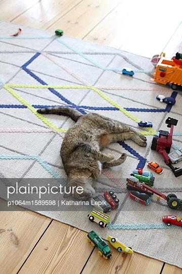 Katzenspiel - p1064m1589598 von Esmeralda