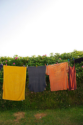 Clothes on a line at camping site - p5390030 by ebba