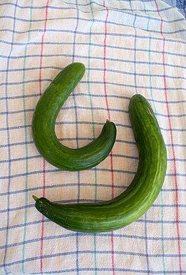 Twisted cucumber - p1199m2257728 by Claudia Jestremski