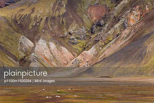 p1100m1520294 von Mint Images