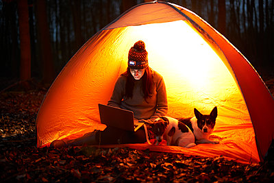 Woman with dog using laptop in glowing tent - p1023m2135756 by Himalayan Pics