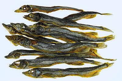 Trockenfisch, Kleine Maränen, Osmerus Eperlanus - p1275m2210230 von cgimanufaktur